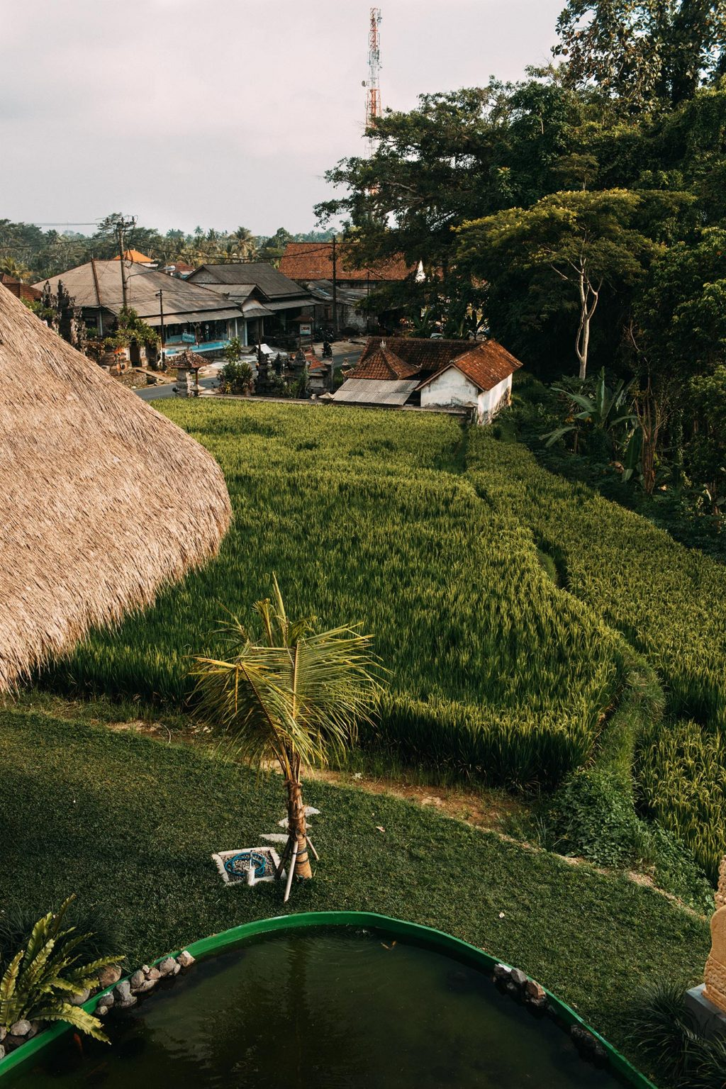 Yesim Yoga Retreat @ Tegallalang Rice Terrace - November 2018